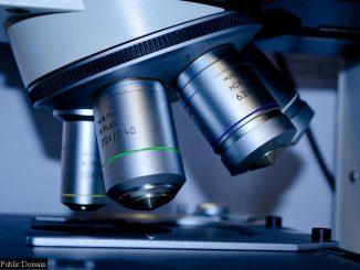 healthcare microscope