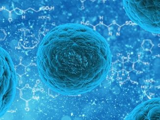 health stem cell