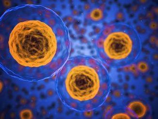 health cells