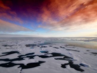 global warming arctic