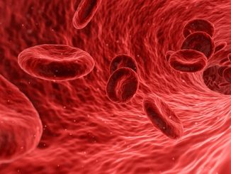 health blood cells