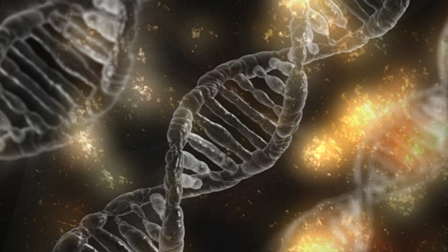 DNA Gene Therapy