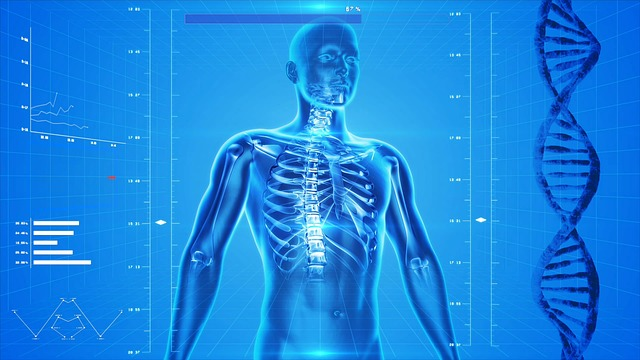 Human Body AI Health Care