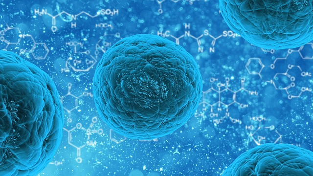 Synthetic Stem Cells Implanted